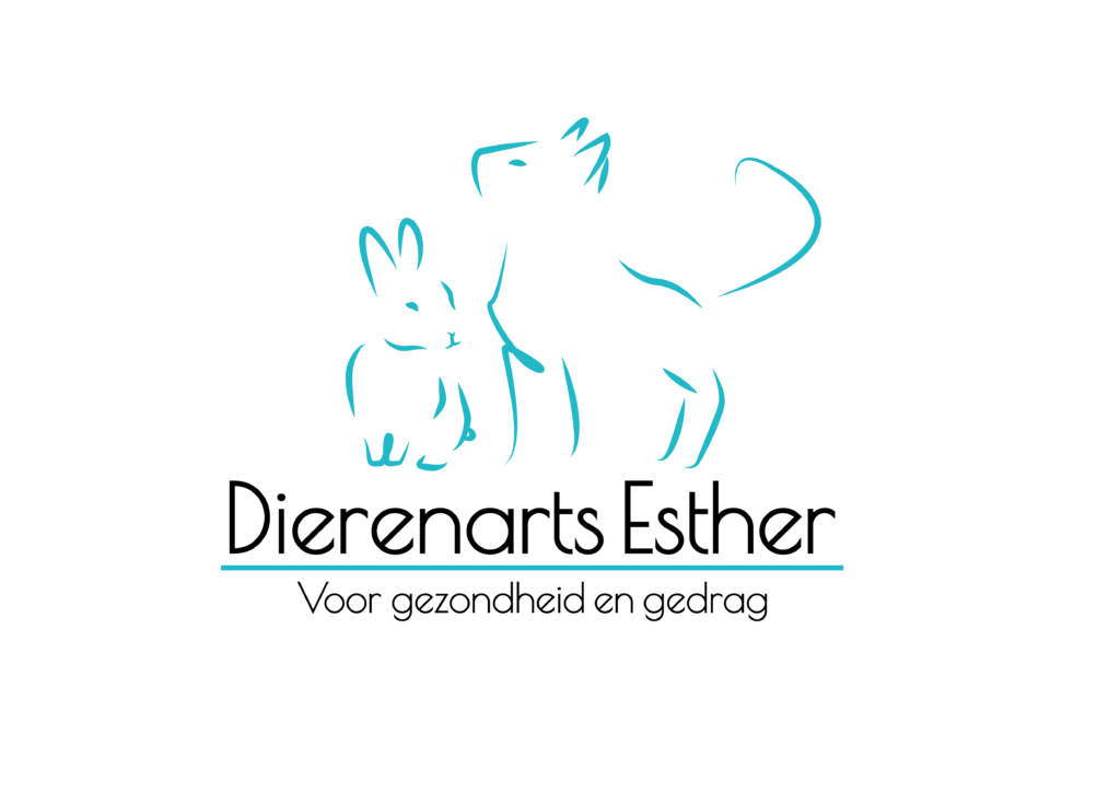 amd visual creations logo dierenarts esther